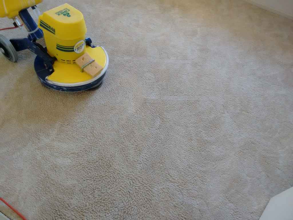 Professional Carpet Cleaner Renmark