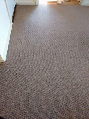 After Carpet Cleaning Riverland