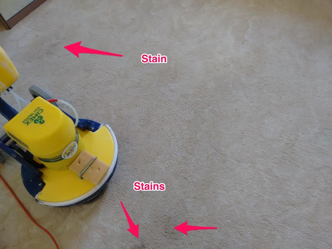 Carpet Cleaner Renmark