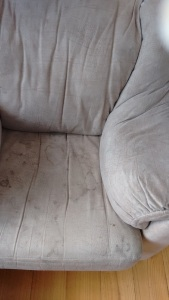 Riverland Upholstery Cleaning
