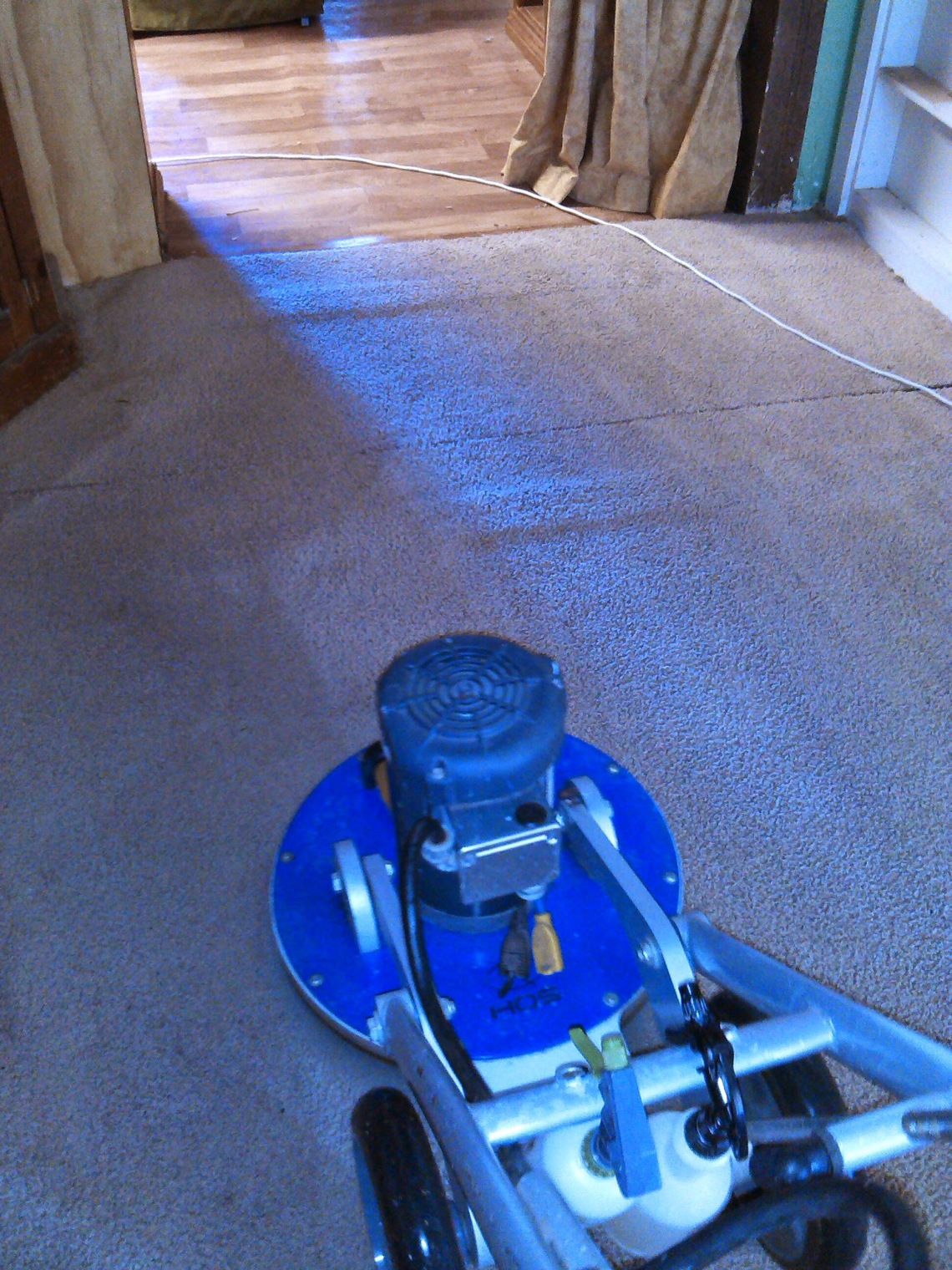 Loxton Carpet Cleaning