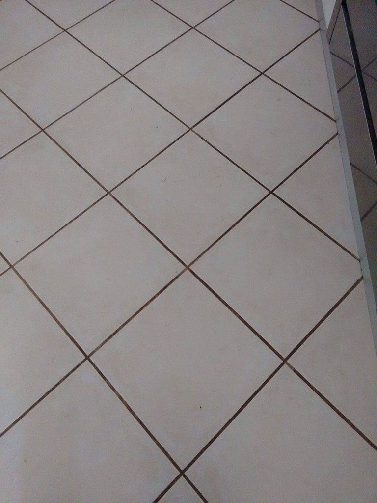 What Can I Do To Get My Floor Tiles And Grout Clean
