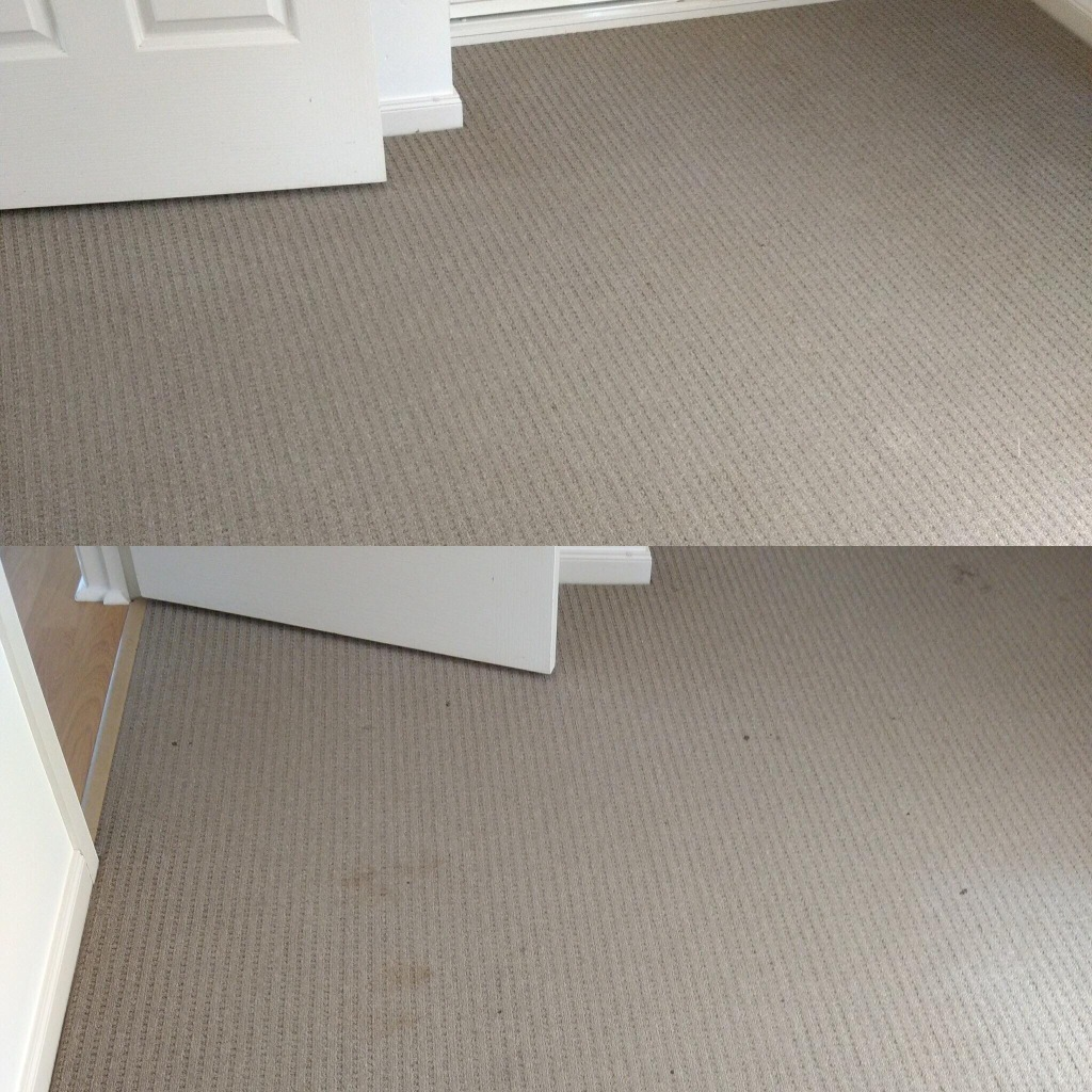 Carpet Care Riverland.