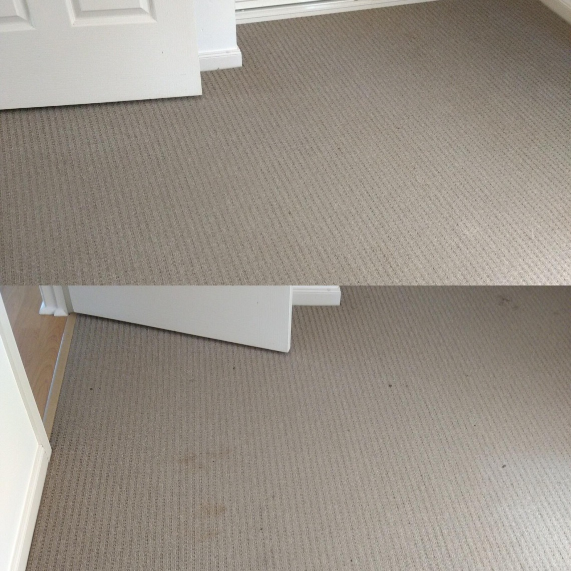 Loxton Professional Carpet Cleaning