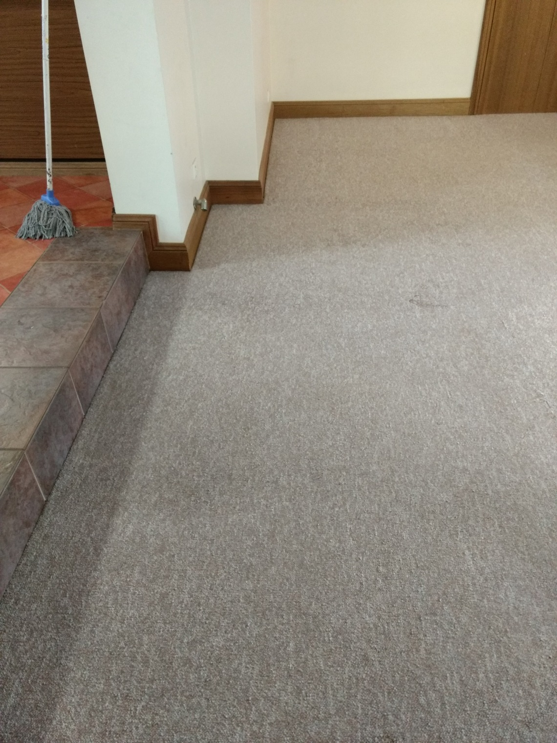 Renmark Carpet Cleaners