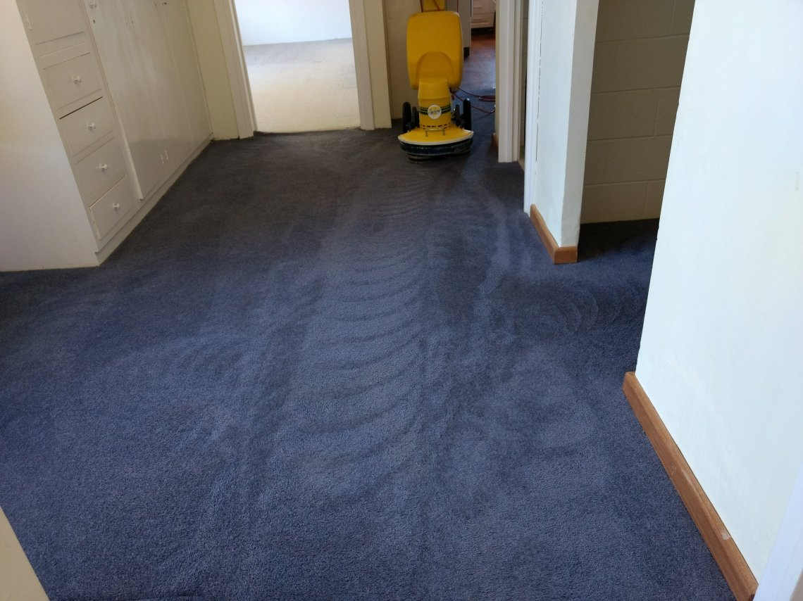 Renmark Professional Carpet Cleaner