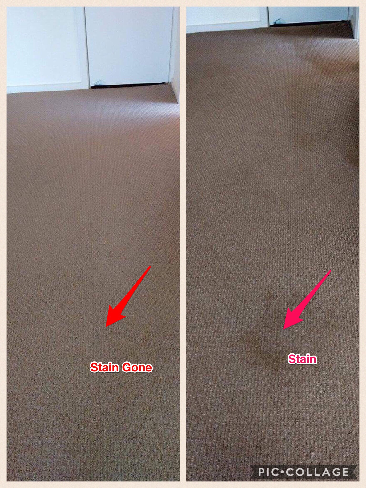 Riverland Carpet Stain Removal.