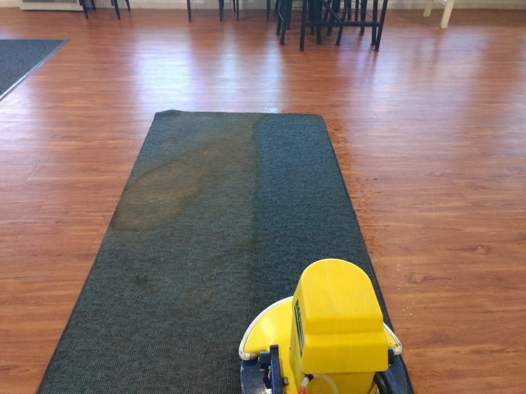 Rug Cleaning Riverland